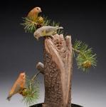 Teton Crossbills