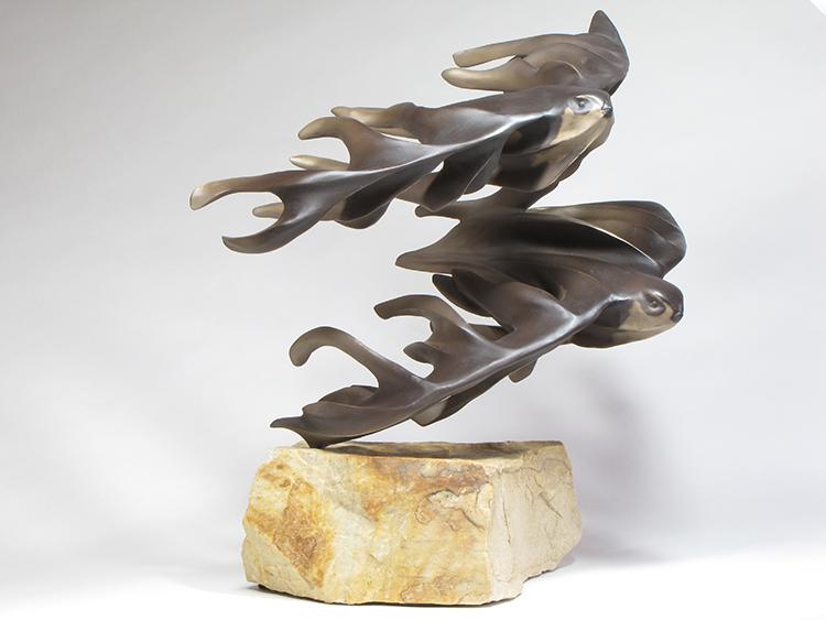 white-throated swifts bronze